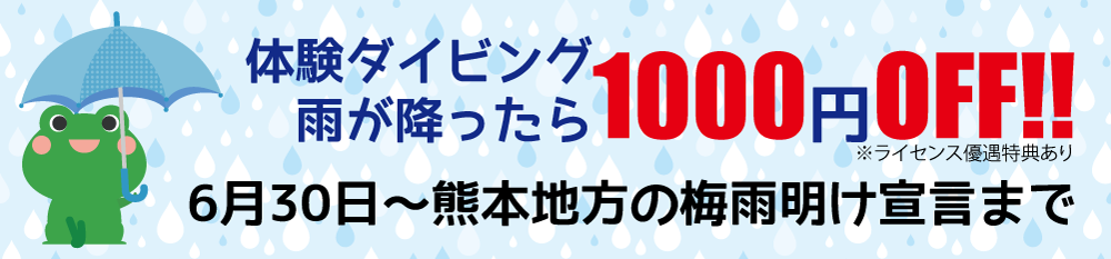 体験ダイビング 雨が降ったら1000円OFF