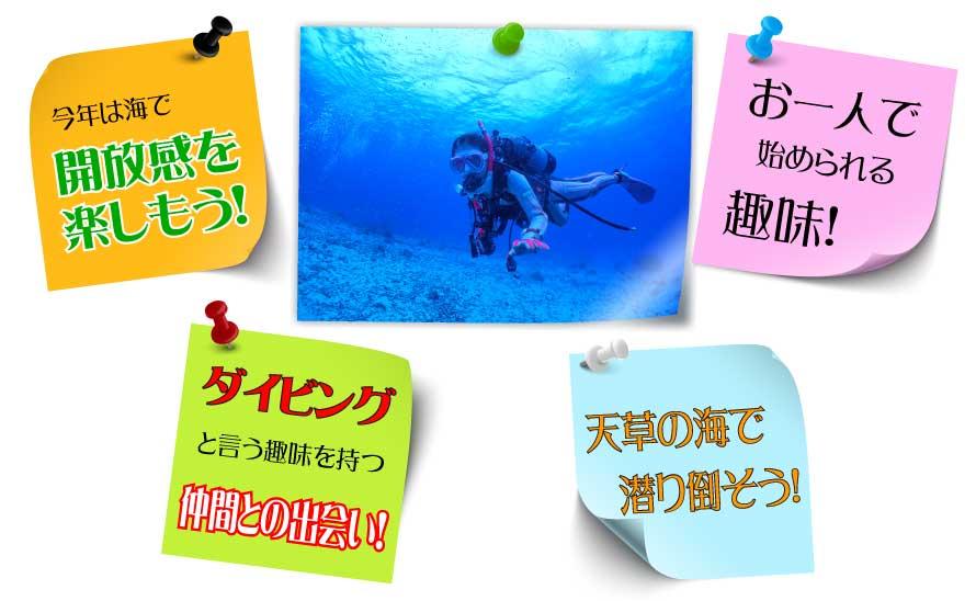 ・今年は海で開放感を楽しもう! ・ダイビングとう趣味を持つ仲間との出会い! ・天草の海で潜り倒そう! ・お一人で始めれる趣味!